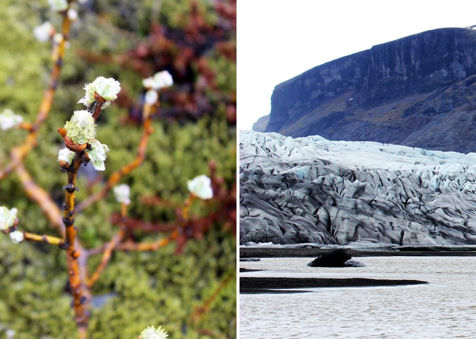 islanti luonto 35