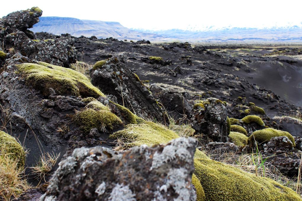 islanti luonto 7