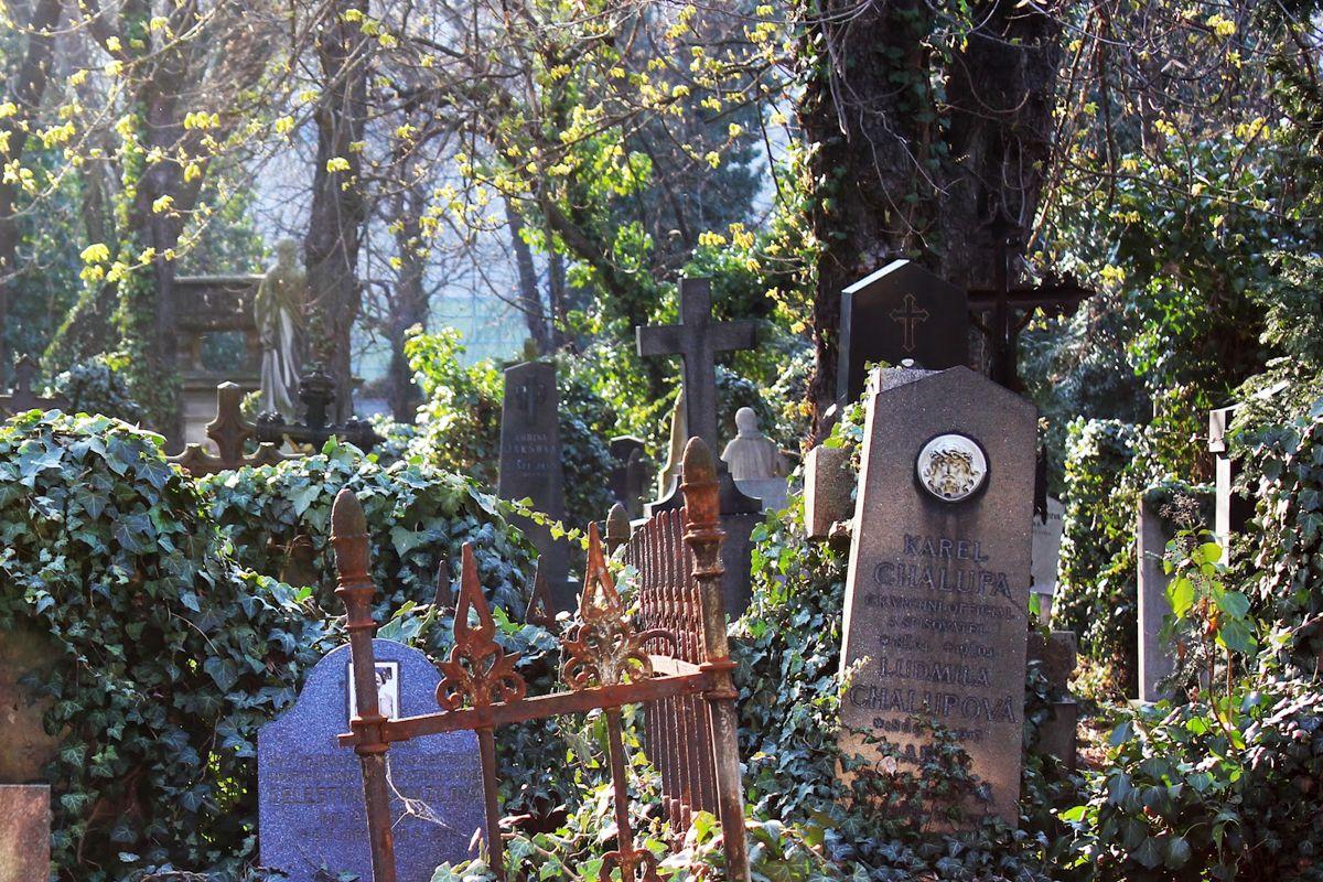 Olsany-Cemetery-2