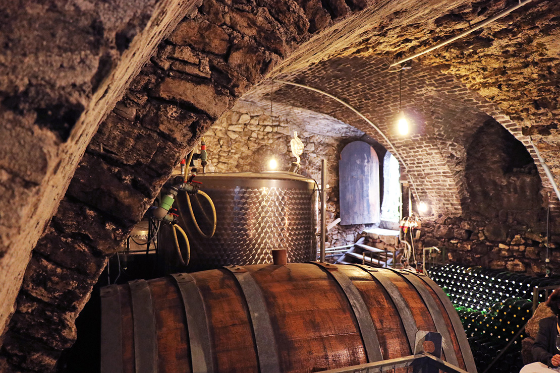 wine-tasting-wien-1