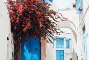 Sidi Bou Said – sinivalkoinen kaupunki kukkulalla